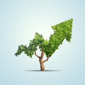 blue background, tree growing in the shape of an arrow showing growth in eco-investments
