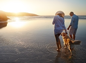 Couple walking on beach and into the future at sunset with their dog, a lab or golden retriever