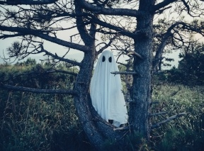 a ghost with big black eyes stands in a tree in an empty field - BLOG